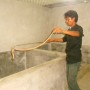 snake3
